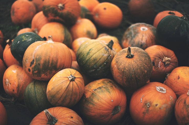 #Blogoween // Halloween Creatures Tag2.0