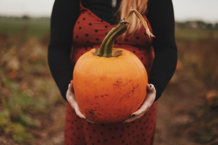 Blogtober // Pumpkin Patch Trip