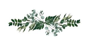 watercolor-modern-decorative-element-eucalyptus-round-green-leaf-wreath-greenery-branches-garland-border-frame-elegant-isolated-138783203